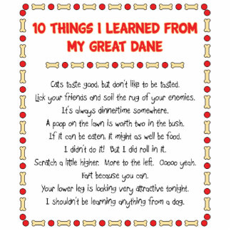 Funny Things I Learned From My Great Dane Standing Photo Sculpture
