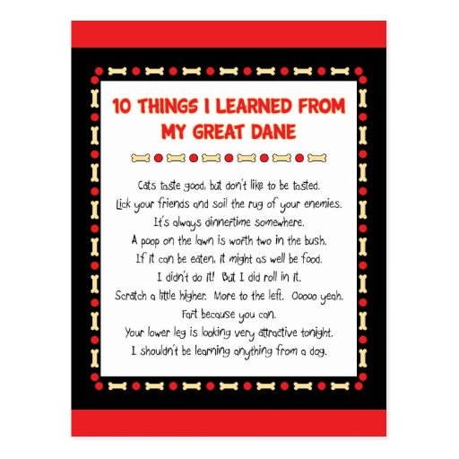 Funny Things I Learned From My Great Dane Post Cards