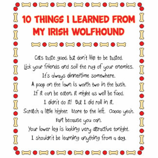 Funny Things I Learned From My Irish Wolfhound Standing Photo Sculpture