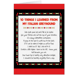 Funny Things I Learned From My Italian Greyhound Greeting Card
