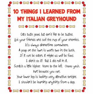 Funny Things I Learned From My Italian Greyhound Photo Cut Outs