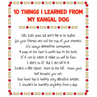 Funny Things I Learned From My Kangal Dog Cut Outs