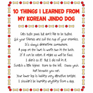 Funny Things I Learned From My Korean Jindo Dog Cut Out