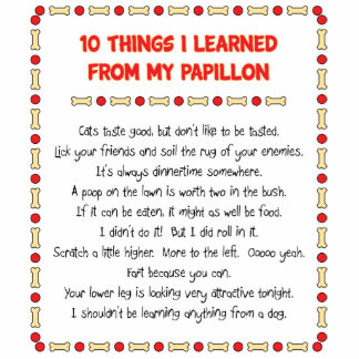 Funny Things I Learned From My Papillon Cut Outs