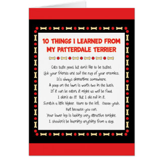 Funny Things I Learned From My Patterdale Terrier Greeting Card