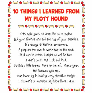 Funny Things I Learned From My Plott Hound Photo Sculpture