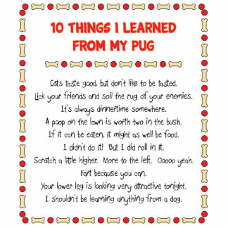 Funny Things I Learned From My Pug Photo Cutouts