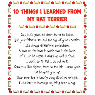 Funny Things I Learned From My Rat Terrier Standing Photo Sculpture