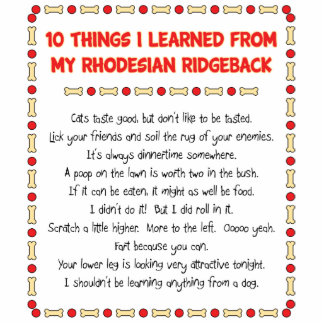 Funny Things I Learned From My Rhodesian Ridgeback Standing Photo Sculpture