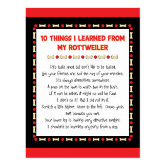 Funny Things I Learned From My Rottweiler Postcard