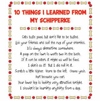 Funny Things I Learned From My Schipperke Photo Cutouts