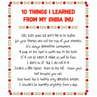 Funny Things I Learned From My Shiba Inu Standing Photo Sculpture