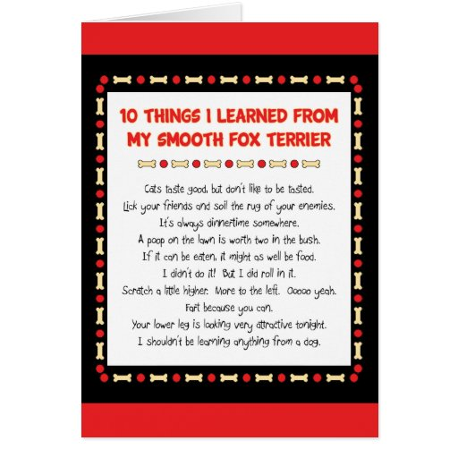 Funny Things I Learned From My Smooth Fox Terrier Greeting Card
