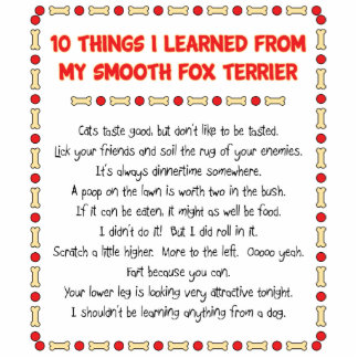 Funny Things I Learned From My Smooth Fox Terrier Photo Cut Outs