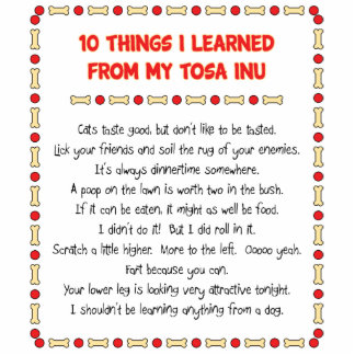 Funny Things I Learned From My Tosa Inu Photo Cut Outs