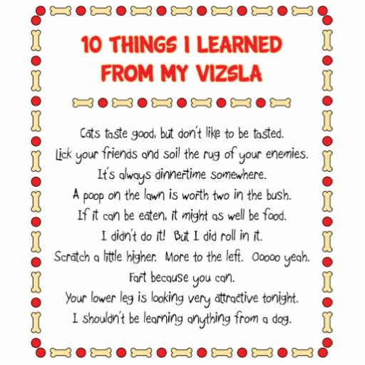 Funny Things I Learned From My Vizsla Acrylic Cut Outs