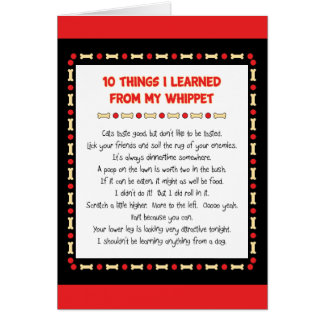Funny Things I Learned From My Whippet Card