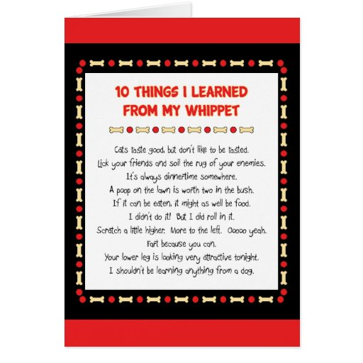 Funny Things I Learned From My Whippet Greeting Card