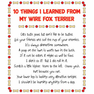 Funny Things I Learned From My Wire Fox Terrier Photo Sculpture