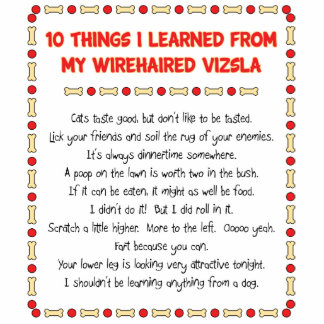 Funny Things I Learned From My Wirehaired Vizsla Standing Photo Sculpture