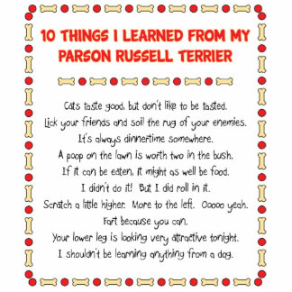 Funny Things I Learned From Parson Russell Terrier Acrylic Cut Out