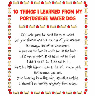 Funny Things I Learned From Portuguese Water Dog Standing Photo Sculpture