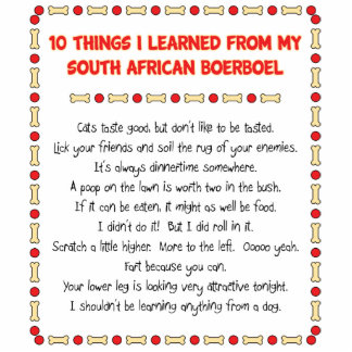 Funny Things I Learned From South African Boerboel Standing Photo Sculpture
