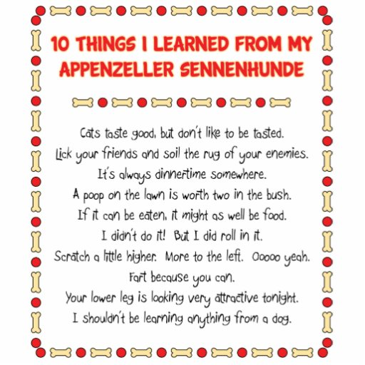 Funny Things Learned From Appenzeller Sennenhunde Acrylic Cut Outs