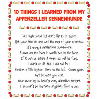 Funny Things Learned From Appenzeller Sennenhunde Standing Photo Sculpture