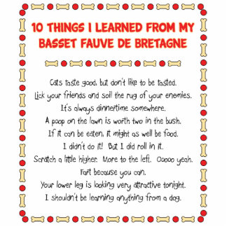 Funny Things Learned From Basset Fauve de Bretagne Acrylic Cut Outs