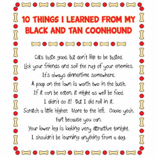 Funny Things Learned From Black and Tan Coonhound Standing Photo Sculpture
