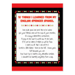 Funny Things Learned From English Springer Spaniel Postcard