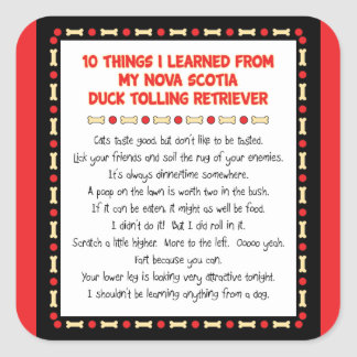 Funny Things Learned From Nova Scotia Duck Toller Stickers