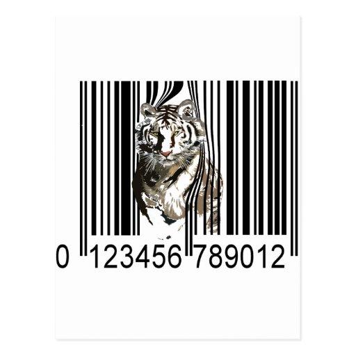 Funny Tiger Barcode Vector Postcard