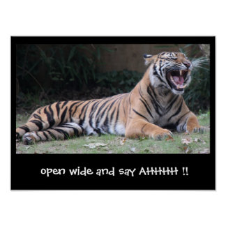Funny Tiger Poster, open wide and say AHHH! Poster