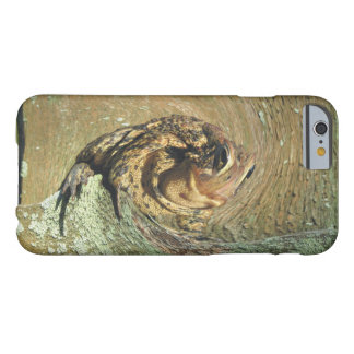 Funny Toadly Hung Over Barely There iPhone 6 Case