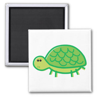 Funny Tortoise on White Magnets
