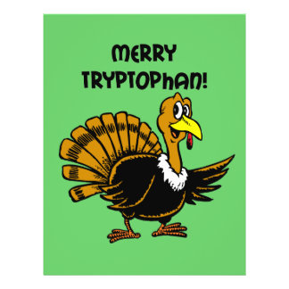 Funny turkey Christmas Custom Flyer