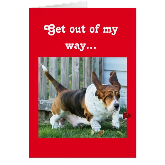Funny Valentine with Basset Hound and Hearts Card