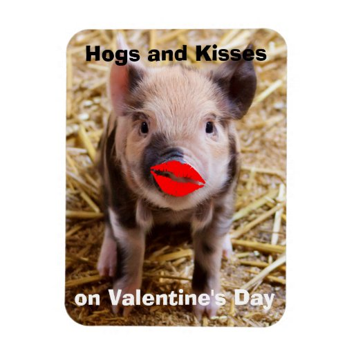 Funny Valentines Day Cute Little Piglet Magnets