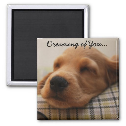 Funny Valentines Day Cute Puppy Fridge Magnets