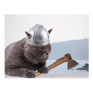 Funny viking cat postcard