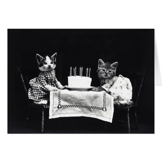 Funny vintage kitty cat dressed kittens birthday card