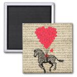 Funny vintage zebra & heart balloons square magnet