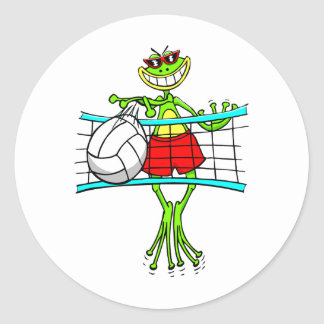 Funny Volleyball Classic Round Sticker