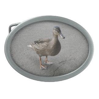 Funny Waddling Duck Belt Buckle