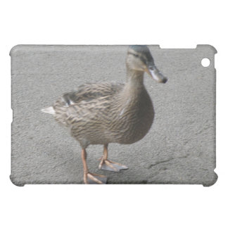 Funny Waddling Duck  iPad Mini Cover
