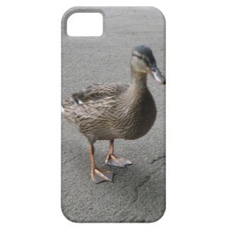 Funny Waddling Duck iPhone 5 Case