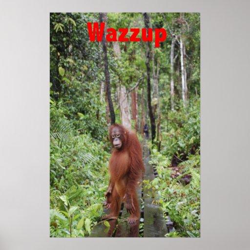 Funny Wazzup with Krista Orangutan Poster