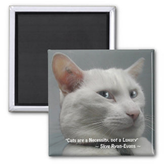 FUNNY WHITE CAT Magnet Series